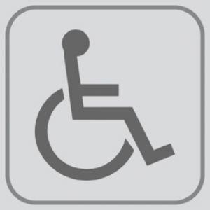 T701024 Plaque pictogramme PVC adhésif Toilettes pour Handicapé (multiple de 5)